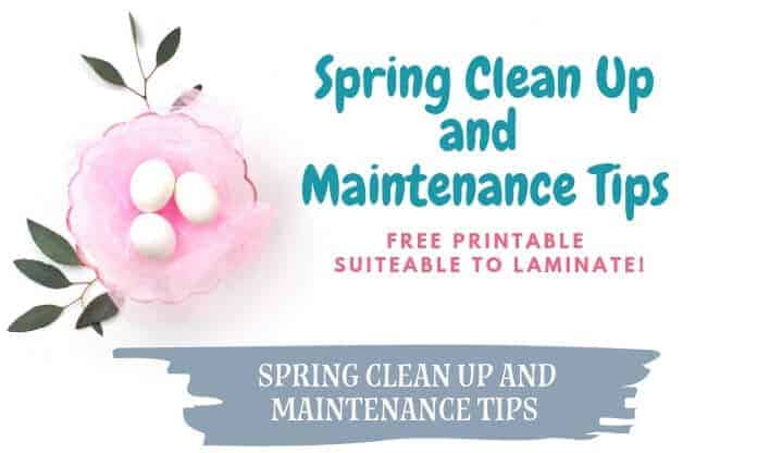 Spring Cleaning and Home Maintenance Tips