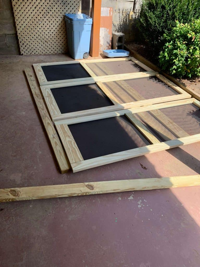 Framing the Catio