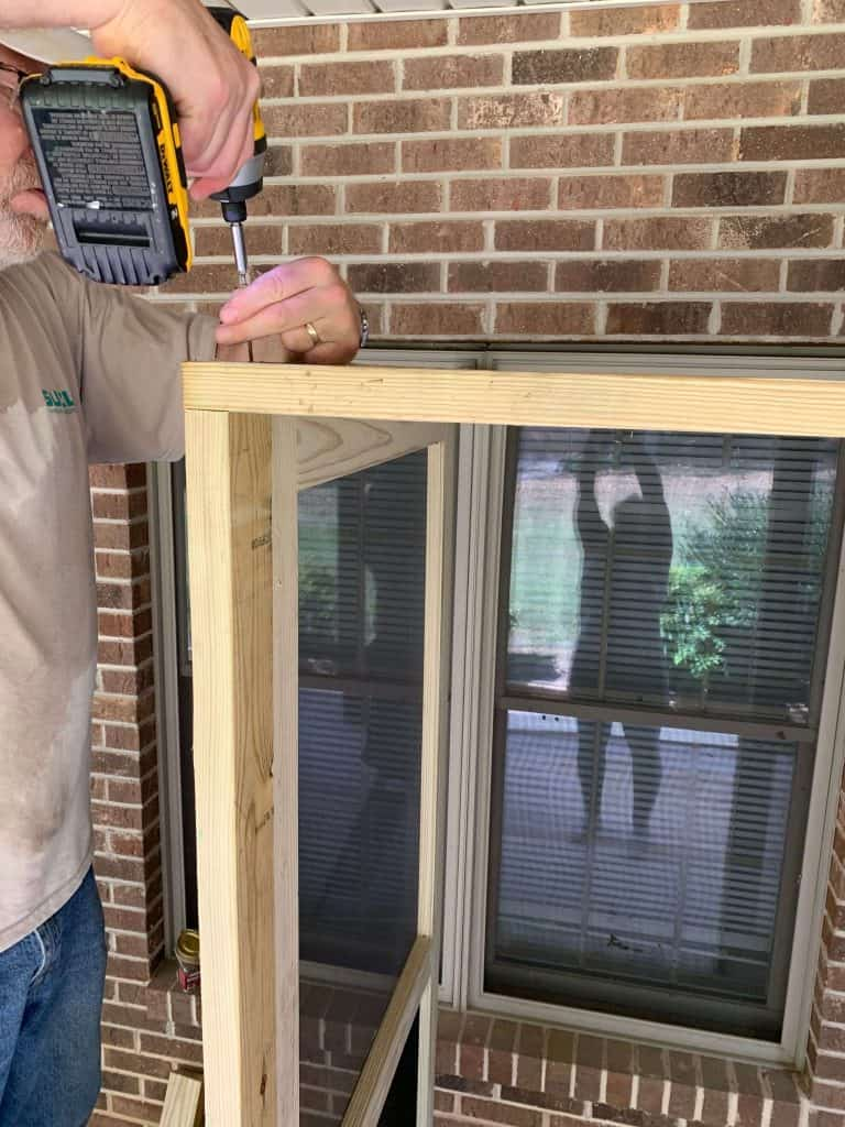 Framing Catio