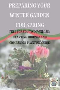 Winter Garden Plan